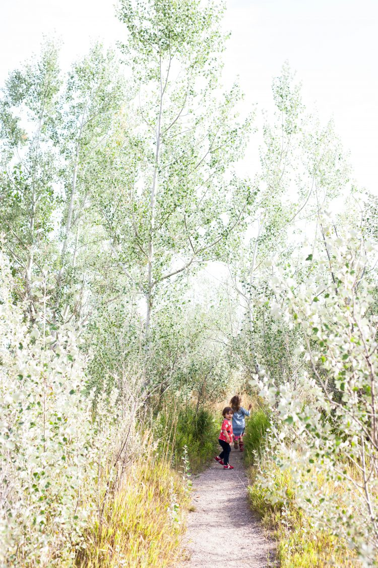kids walking down a colorado path